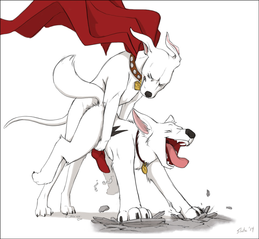 krypto superdog the tail terrier Boy to girl transformation sequence